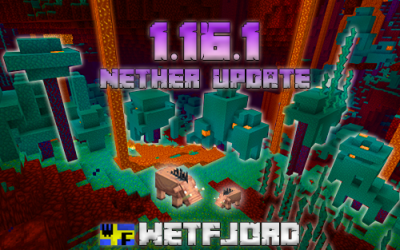 The Minecraft server has updated to 1.16.1